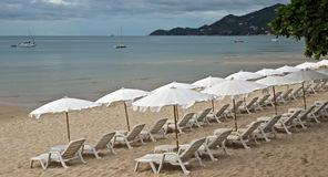 Beach with loungers and umbrellas. Sandy Beach with Loungers and Umbrellas in Koh Samui, Thailand Royalty Free Stock Images