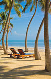 Beach Lounges Royalty Free Stock Images