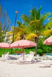Beach lounges under an umbrella on white sand Stock Image