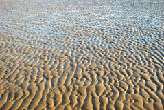 Beach at low tide Royalty Free Stock Images