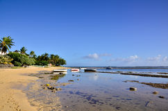 Beach at low tide from Mauritius Royalty Free Stock Photos