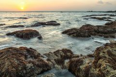 Beach during low tide, rocks with algae surfaced from sea, in sunset light. Koh Lanta, Thailand. royalty free stock image