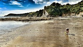 Beach at Low Tide, near St Austell, Cornwall Stock Image