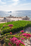 Beach at the luxury hotel, Sharm el Sheikh, Egypt Royalty Free Stock Photography
