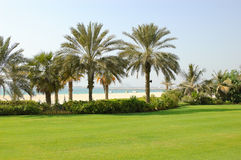 Beach of luxury hotel with a view on Palm Jumeirah. Man-made island, Dubai, United Arab Emirates Stock Image