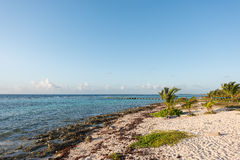 The beach in Mahahual, Mexico Stock Photography