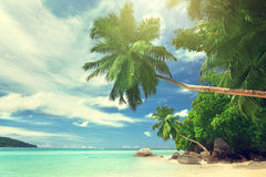 Beach on Mahe island Stock Photography