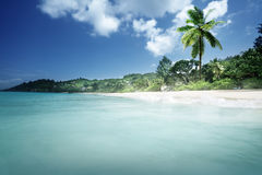 Beach on Mahe island Stock Photo