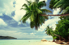 Beach on Mahe island in Seychelles Stock Photography