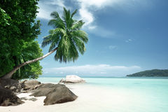 Beach on Mahe island in Seychelles Stock Images