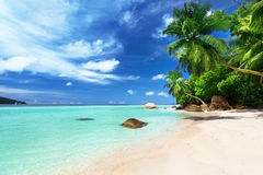 Beach on Mahe island, Seychelles Royalty Free Stock Photography