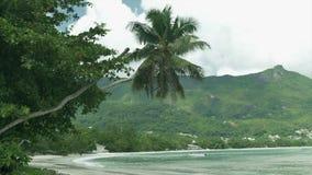 Beach at Mahe island, Seychelles. Natural landscape of Seychelles in Mahe island. Beautiful tropical beach at Seychelles. Tropical beach with palms and rocks stock video
