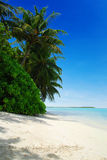 Beach in Maldives Stock Photos