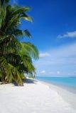 Beach in Maldives Stock Photography