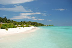 Beach in the Maldives. Deserted tropical beach in the Maldives Stock Image