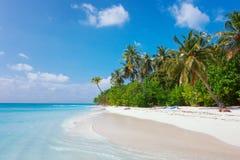 Beach at Maldives island Fulhadhoo with white sandy idyllic perfect beach and sea and curve palm. Scenic view of Wild idyllic Beach at Maldives island Fulhadhoo stock photo