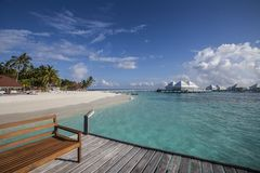 Beach in the Maldives. Paradisiacal landscape tropical beach in the Maldives Stock Images
