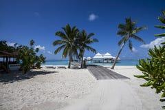 Beach in the Maldives Stock Image