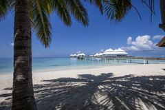 Beach in the Maldives Royalty Free Stock Images
