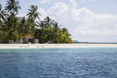 Beach in the Maldives. Paradisiacal landscape tropical beach in the Maldives Royalty Free Stock Images