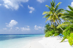 Beach in Maldives. Private beach in a resort island, Maldives