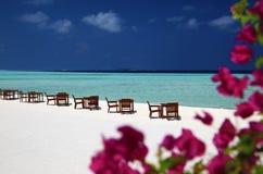 Beach Maldives tropical Stock Photos