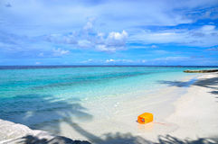 Beach in Maldives Royalty Free Stock Images