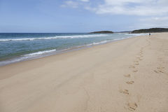 Beach at the Mallacoota Inlet Royalty Free Stock Image