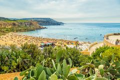 Beach on Malta island. Sandy beach with tourists on Malta island with cactus in the foreground Royalty Free Stock Images