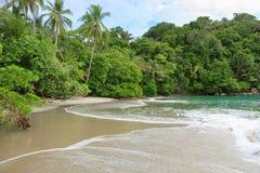 Beach Manuel Antonio Costa Rica. Sand beach and trees at Manuel Antonio Costa Rica royalty free stock photo