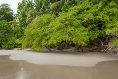 Beach Manuel Antonio Costa Rica stock photography