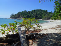Beach in Manuel Antonio nation park Royalty Free Stock Image