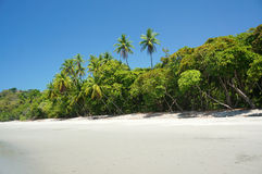 Beach in Manuel Antonio stock images
