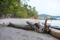 Beach near Manuel Antonion. Beach in the Manuel Antonion area of Costa Rica royalty free stock images