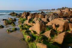 Beach with many rocks Stock Image