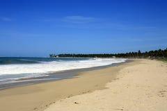 Beach of maracaipe Royalty Free Stock Images