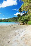 Beach at Marlborough Sounds, New Zealand Stock Photo