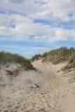 Beach on Martha's Vineyard, MA Stock Photography