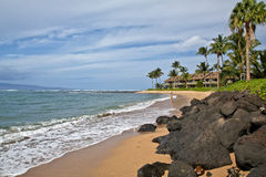 Beach in Maui Stock Image