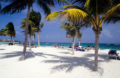 Beach on the Mayan Riviera Royalty Free Stock Photography