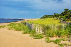 Beach Meadow royalty free stock image