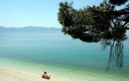 Beach of the Mediterranean sea. In Croatia stock image