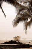 Beach memory. Boat and coconut tree in Sanya beach, Hainan island,China Stock Photo