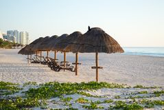 The beach in Mexico, Cancun. Royalty Free Stock Photography