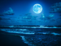 Beach at midnight with a full moon. Shining on the sky Royalty Free Stock Photo
