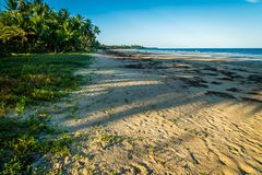 The beach in Mission beach in Queensland, Australia royalty free stock images