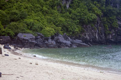 Beach at Monkey Island Royalty Free Stock Images
