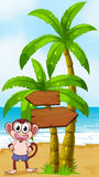 A beach with a monkey near the arrow signages Royalty Free Stock Image