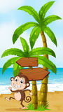 A beach with a monkey playing near the palm trees with arrowboar Royalty Free Stock Images