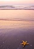 Beach morning Royalty Free Stock Photography